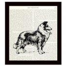 Collie Dictionary Art Print 8 x 10 Home Decor Vintage Dog Illustration Unframed