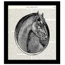 Horse Dictionary Art Print 8x10 Stallion Portrait Vintage Equestrian Home Decor