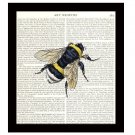 Dictionary Art Print 8 x 10 Bumble Bee Nature Illustration Home Decor