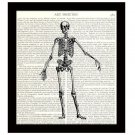 Human Skeleton 8 x 10 Dictionary Art Print Anatomy Medical Science Book Page