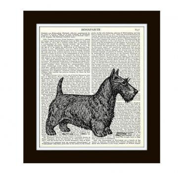 Scottish Terrier Dictionary Art Print 8 x 10 Vintage Dog Illustration Home Decor
