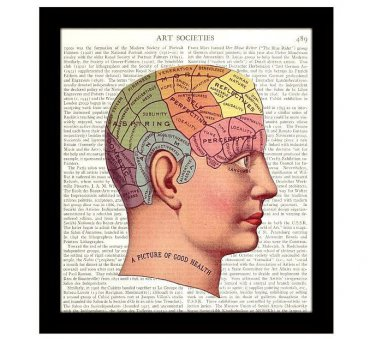 Dictionary Art Print 8 x 10 The Brain 19th Century Psychology Human Behavior