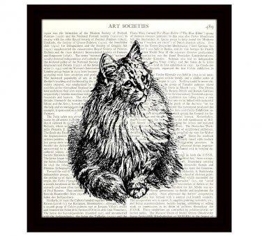 Cat Dictionary Art Print 8 x 10 Vintage Feline Illustration Housecat Home Decor