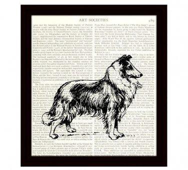 Collie Dictionary Art Print 8 x 10 Home Decor Vintage Dog Illustration