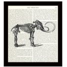 Dinosaur Dictionary Art Print 8 x 10 Mastodon Skeleton Archaeology Prehistoric