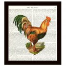 Rooster Dictionary Art Print 8 x 10 Cottage Chic Colorful Vintage Kitchen Decor