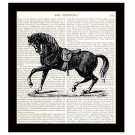 Horse Dictionary Art Print 8 x 10 Stallion Vintage Equestrian Home Decor