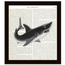 Shark Dictionary Art Print 8 x 10 Nautical Home Decor Beach Ocean Sea Life