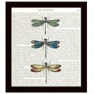 Dictionary Art Print 8 x 10 Colorful Dragonflies Collage Book Page Home Decor