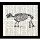 Dinosaur Dictionary Art Print 8x10 Amblypoda Skeleton Archaeology Prehistoric