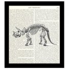 Dinosaur Dictionary Art Print 8 x 10 Triceratops Skeleton Natural History Decor