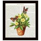 Botanical Dictionary Art Print 8 x 10 Butterflies Yellow Flowers Terracotta Pot