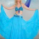 Gorgeous Bollywood Dancer Costume Set