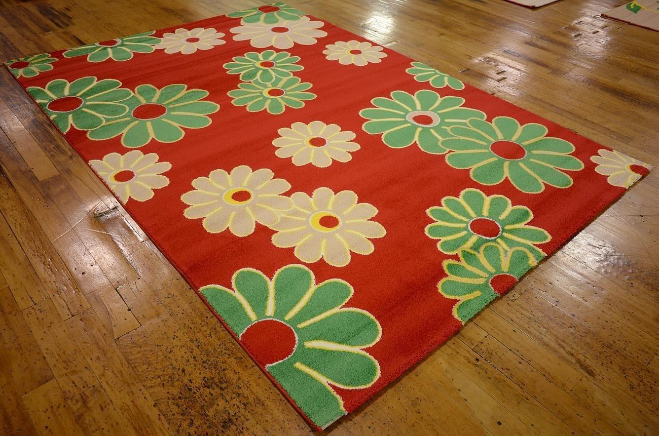 Clearance Liquidation art home decor Persian oriental rug carpet flooring superb