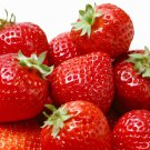 Garden Strawberry 500 seeds Fragaria Ananassa Easy grow * Hardy* *SHIPPING FROM US* CombSH I31