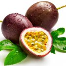 10 + passion fruit (Passiflora edulis) seeds purple granadilla Edible Tropic I74
