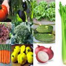 9,100 SEEDS VEGETABLE VARIETIES EMERGENCY SURVIVAL GARDEN PACK  NON-GMO HEIRLOOM
