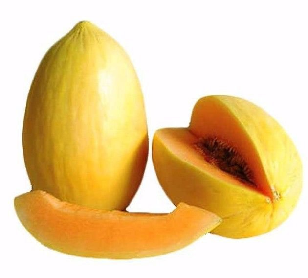 Crenshaw Melon (Cucumis melo) 100 seeds *Non GMO Fruit*sweet*easy grow* *SHIPPING FROM US* CombSH
