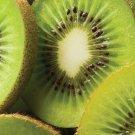 200 KIWI FRUIT Actinidia Vine Seeds *ez grow* CombSH A73