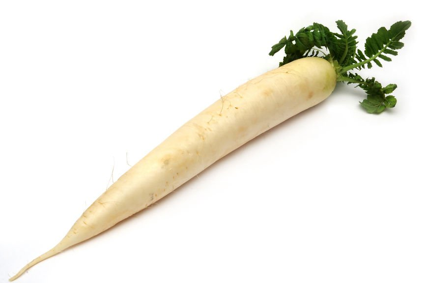 Japanese Radish 250 seeds* Daikon * NON GMO * ez grow * *SHIPPING FROM US* CombSH F24