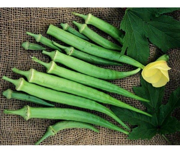 150 Perkins Long Pod Okra seeds * Heirloom * Non GMO * CombSH M45