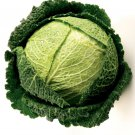Savoy Cabbage Brassica oleracea  250 seeds * hardy * ez grow * *SHIPPING FROM US* CombSH E12