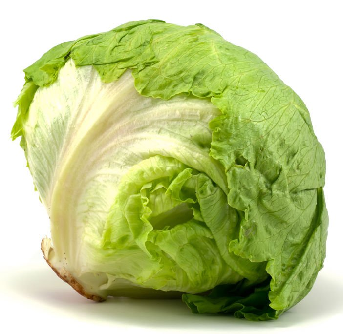 Icberg Head Lettuce Lactuca sativa 3000 seeds * NON GMO * ez grow * *SHIPPING FROM US* CombSH G45