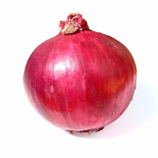 ( Short day )  Red Burgundy onion 200 seeds * NON GMO * ez grow * *SHIPPING FROM US* CombSH I43