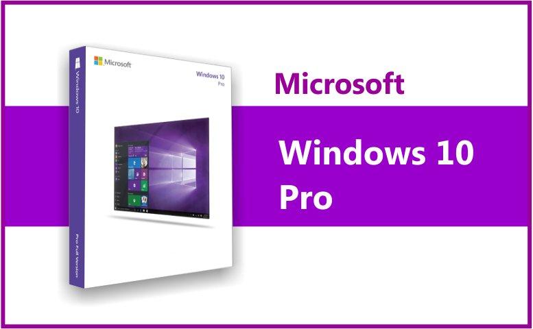 Microsoft Windows 10 Pro (Disc Version)