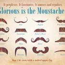 Glorious is the Moustache! Tash Collection Old Barber Shop, Small Metal/Tin Sign
