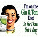 Gin & Tonic Diet, Funny, Vintage Retro, Gift Kitchen Bar, Small Metal/Tin Sign