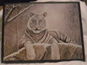 Framed Picture - White Tiger