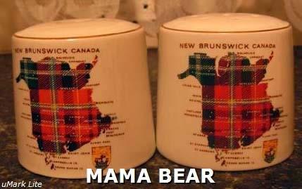 New Brunswick Tartan Salt & Pepper Shakers Lord Nelson Pottery
