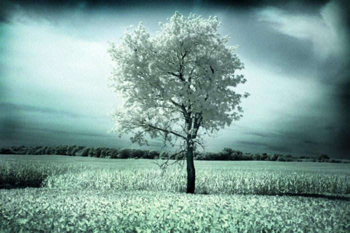 you begin to feel alone-20x30 fine art photograph