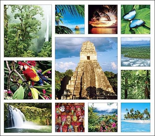 Tropical Equatoria Calendar with Bonus