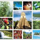 Tropical Equatoria Calendar with Bonus