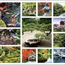 Asian Gardens Calendar with Bonus