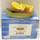 "Wholesale 3"" Citrus Teenie Oval Candle Toppers"