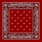 Wholesale Red Paisley Bandanas - Dozen Packed 22x22