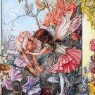 Cicely Mary Barker The Sweet Pea Fairies Fine Art Print 32x24