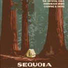 Vintage Sequoia National Park Wpa Poster Art Print 32x24