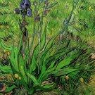 Van Gogh The Iris Print 32x24