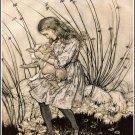 Arthur Rackham Alice In Wonderland Iv Fine Art Print 32x24
