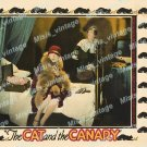 The Cat And The Canary 1927 Vintage Movie Poster Reprint 6