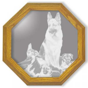 "13"" ""Rookies"" by Linda Picken German Shepard Police Dog Etched Wall Mirror"