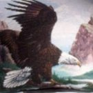 "18""x18"" Soaring Eagle Throw Pillow"