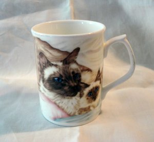 Duchess bone china cat coffee mug Pillowtalk Himalayans unused vintage cm1373