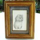 Long haired kitten with spider print V Miller oak frame Persian cm1455