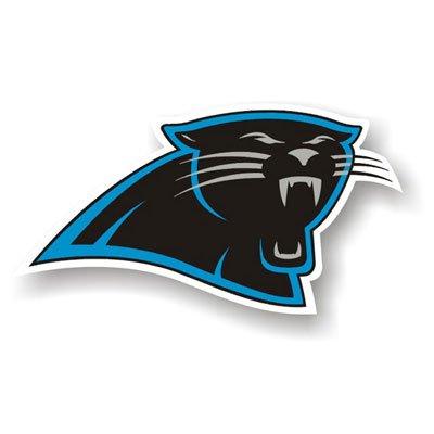 """Carolina Panthers 12"""" Car Magnet"""