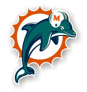 """Miami Dolphins 12"""" Car Magnet"""